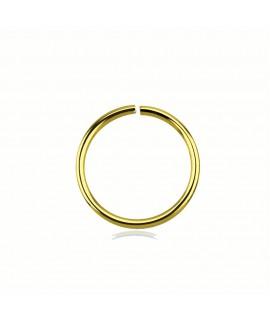 Segmentring 10mm Außendurchmesser vergoldet Piercing 2,10€